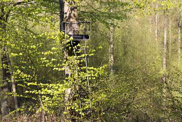 Tips for Setting up and Using a Climber or Tree Stand Safely
